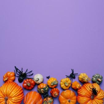 Calabazas y arañas de halloween con espacio de copia en la parte superior