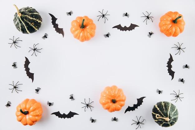 Calabazas, arañas y murciélagos en blanco