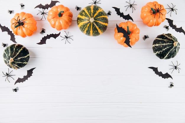 Calabazas, arañas y murciélagos en madera blanca
