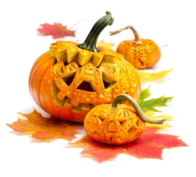 Calabazas de halloween en blanco