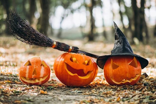 Calabazas de halloween con escoba en un bosque de otoño