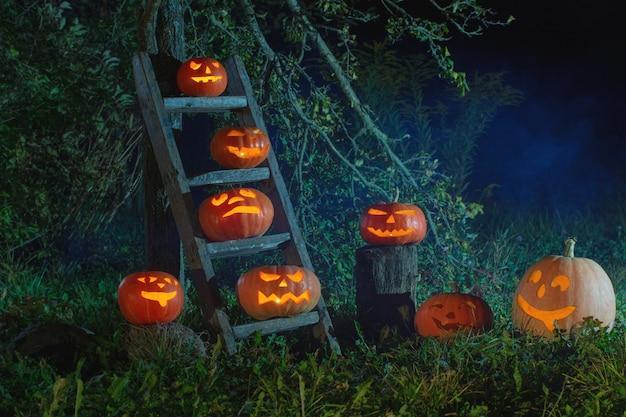 Calabazas de halloween jack-o-lantern al aire libre