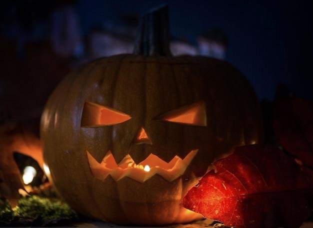 Calabazas de halloween en madera en un bosque espeluznante en la noche