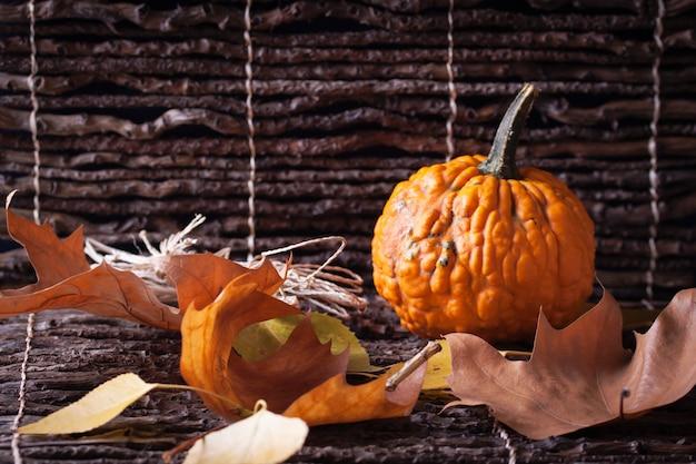 Calabazas y hojas secas