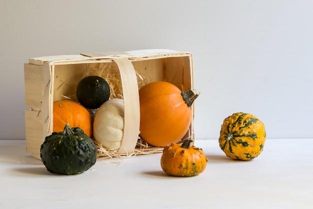 Calabazas ornamentales en una caja de madera