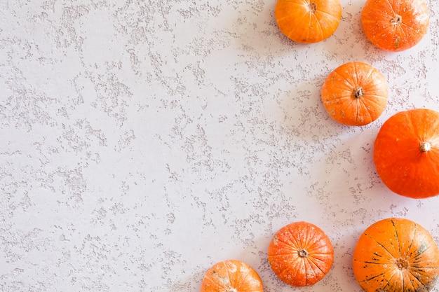 Calabazas de otoño sobre fondo blanco.