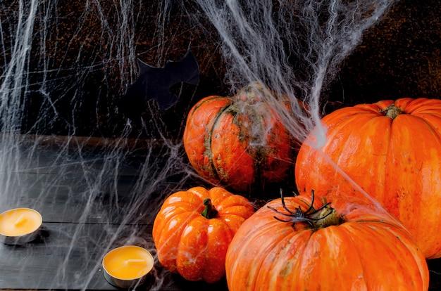Calabazas de otoño, telaraña y araña en negro.