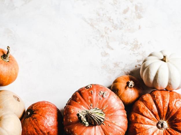Calabazas de otoño de varios tamaños y colores vista superior. copyspace