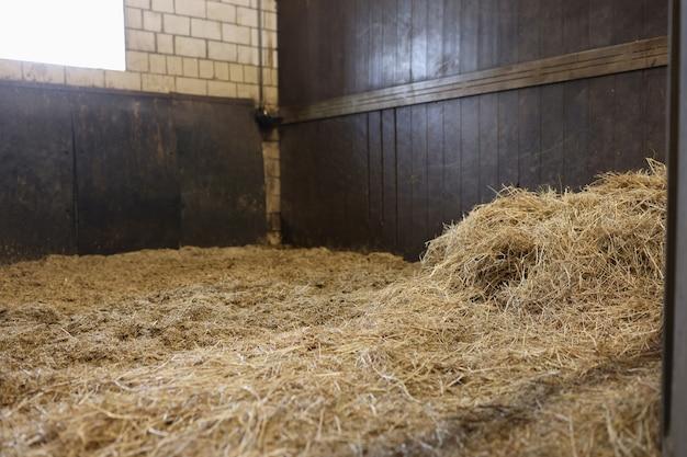 Calado vacío en el establo con concepto de mantenimiento de caballos de heno