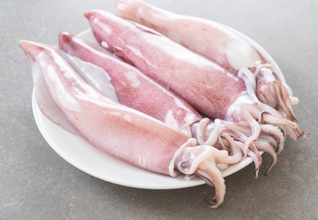 Calamar fresco