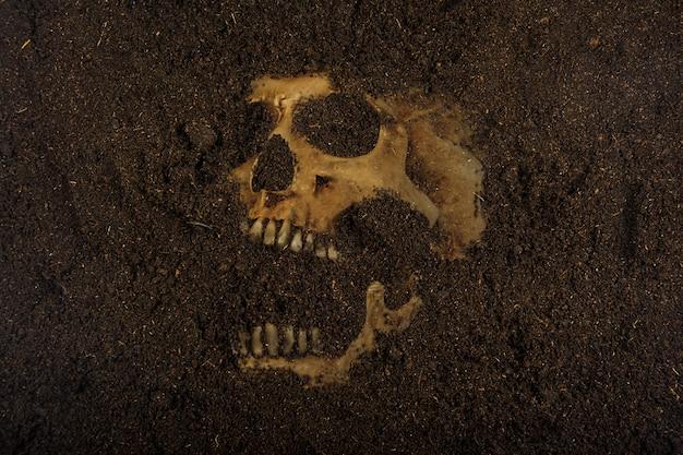 Calavera enterrada en el suelo
