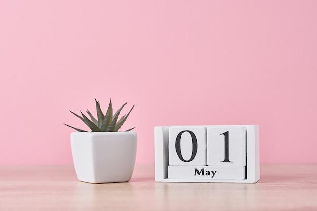 Calendario de bloque de madera con fecha 1 de mayo y planta suculenta en maceta sobre fondo amarillo. concepto del día del trabajo