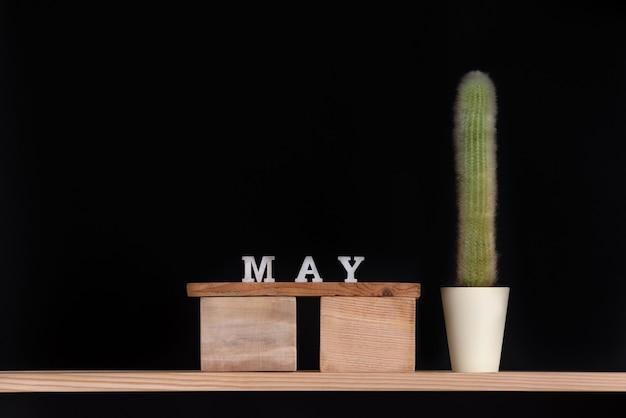Calendario de madera de mayo y cactus sobre fondo negro. bosquejo.