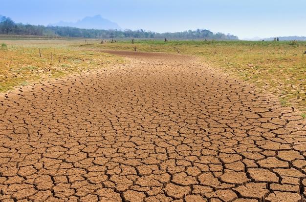 Calentamiento global, sequía.