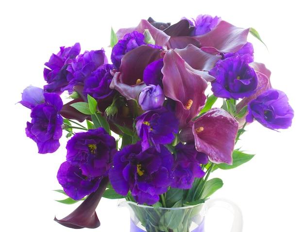 Calla lilly violeta fresca y flores de eustoma azul cerca aisladas en blanco