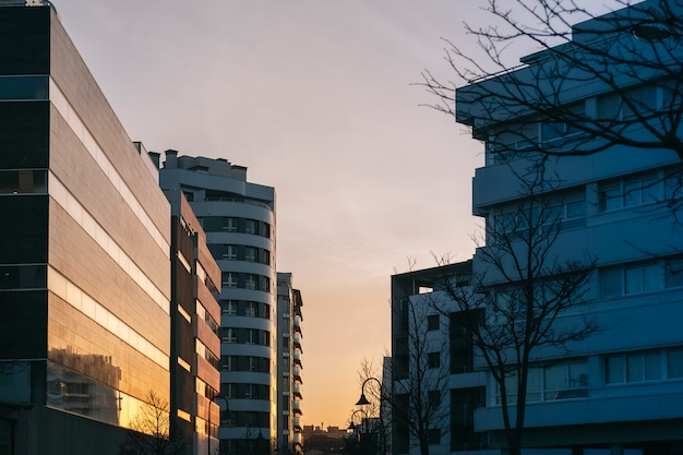 Una calle de una ciudad con edificios modernos que entran al sol al atardecer reflexionando sobre los cristales