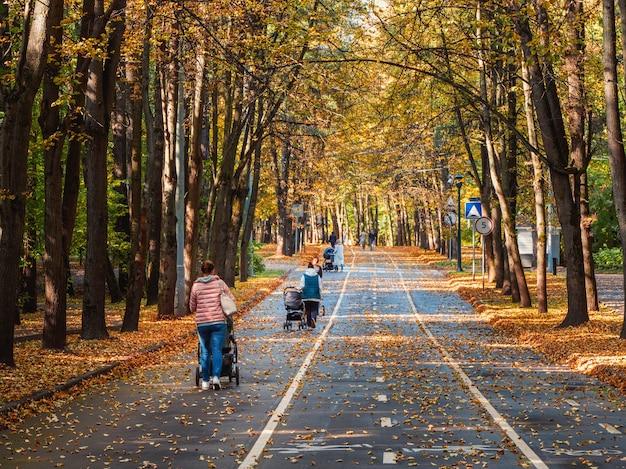 Callejón de otoño con mamás que caminan con cochecitos de bebé. moscú.