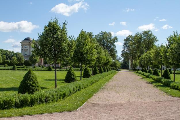 Callejón del parque con camino de piedra triturada con árboles y arbustos recortados verdes