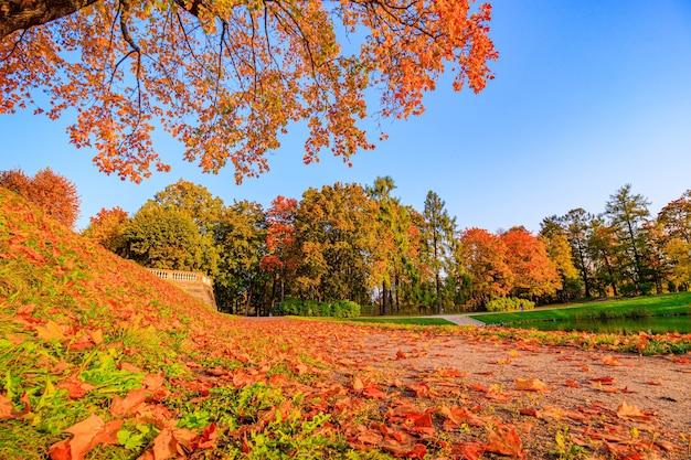 El callejón del parque de otoño la temporada es otoño septiembre octubre noviembre