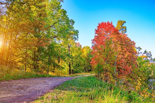 El callejón del parque de otoño la temporada es otoño.