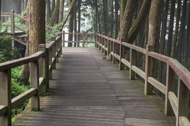 La calzada de la madera en el bosque de alishan en el parque nacional de alishan, taiwán.