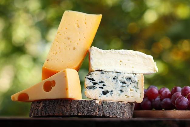 Camembert, queso brie, queso duro y queso azul sobre tabla de madera. rebanadas de varios quesos y uvas en borrosa