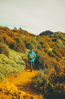 Caminante caminando por la naturaleza