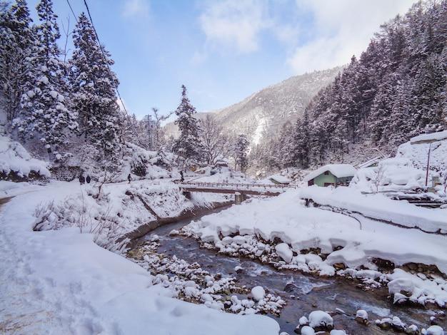 Camine camino al parque de los monos de nieve en invierno en japón