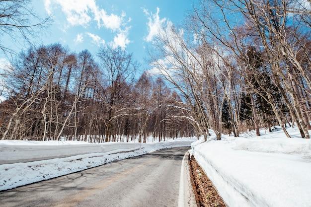 Camino por carretera en tiempo de nieve