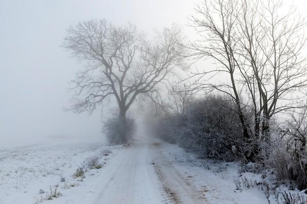 Un camino cubierto de nieve en invierno.