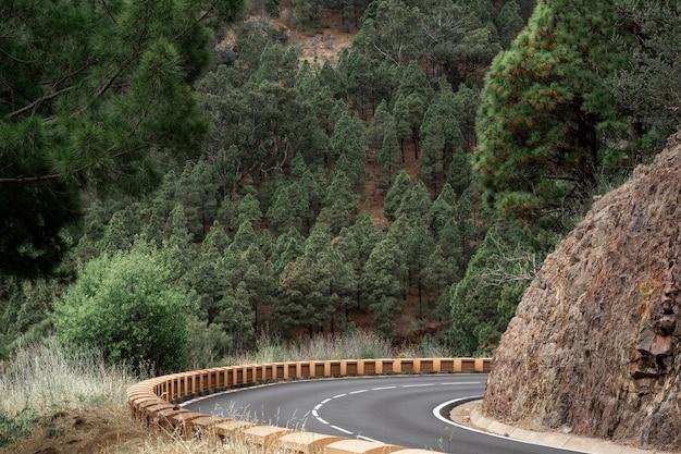 Camino de la curva en la colina