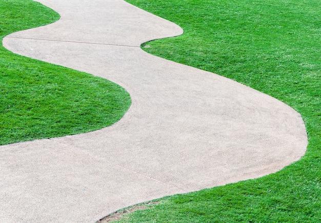 Camino de la curva