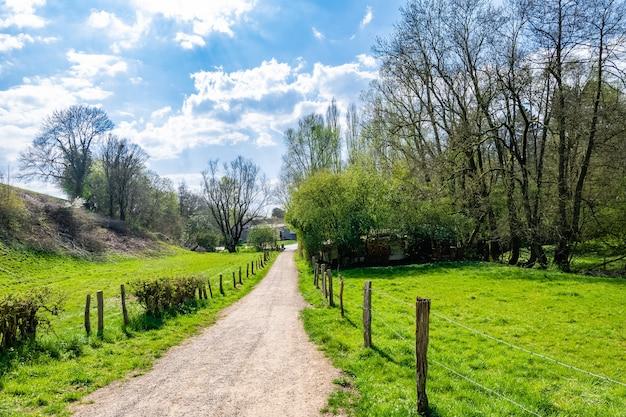 Camino estrecho en el campo rodeado de valle verde
