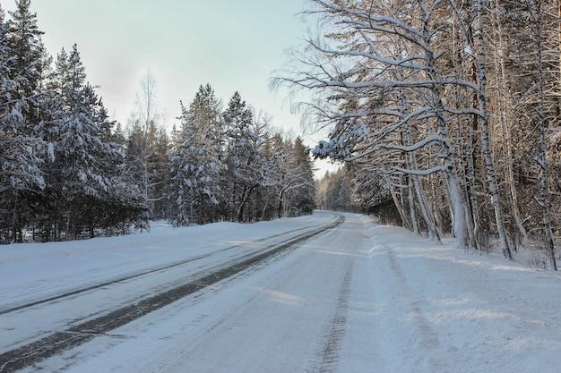 Camino de invierno, que atraviesa el bosque