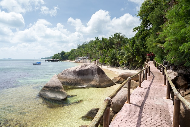 Camino junto al mar con grandes piedras y plantas verdes.