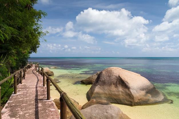 Camino junto al mar con grandes piedras y plantas.