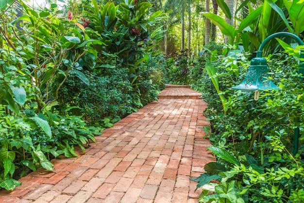 Camino de ladrillos en un jardín tropical