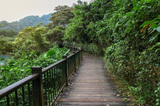 El camino de la madera para caminar en el lago sun moon en taiwán
