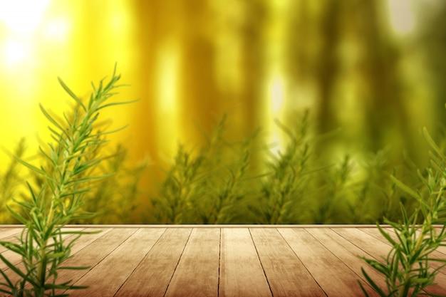 Camino de madera con hojas verdes tropicales
