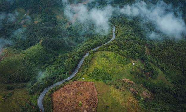 Camino en la montaña en la temporada de lluvia en doi chiang rai tailandia