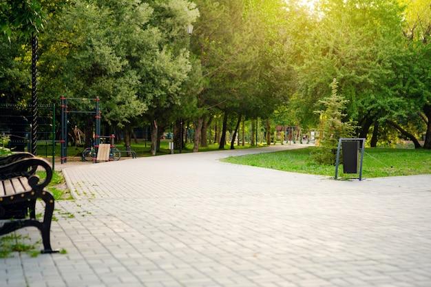 El camino en el parque de la ciudad con árboles y césped