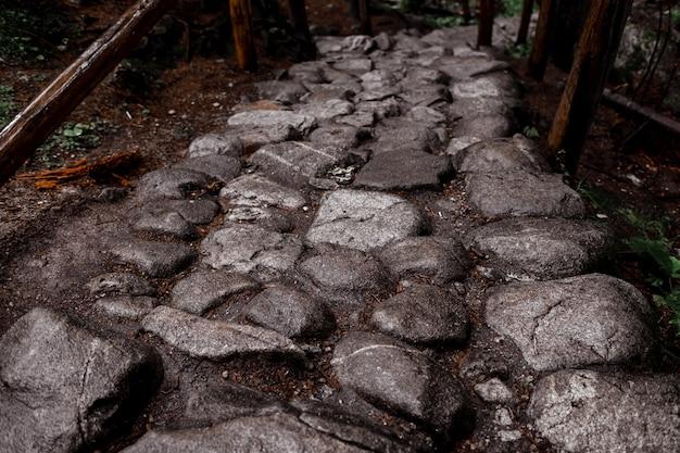 Camino de piedra en un bosque en las montañas