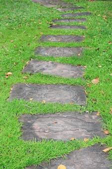 Camino de piedra en el parque con fondo de hierba verde