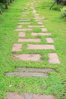 Camino de piedra en el parque con la hierba verde alrededor.