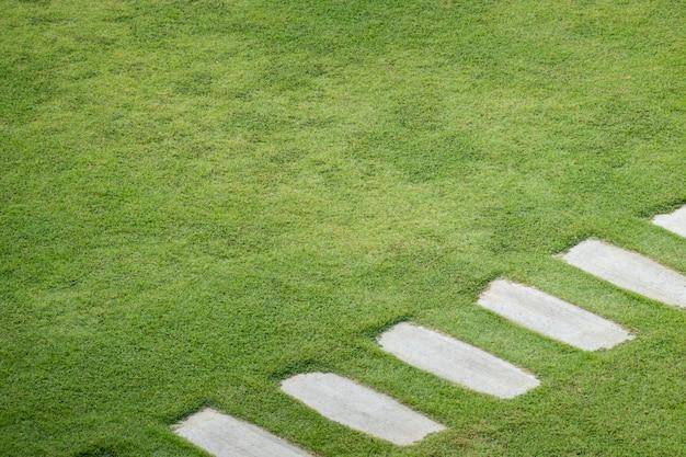Camino de piedra a pie en el jardín del patio verde.