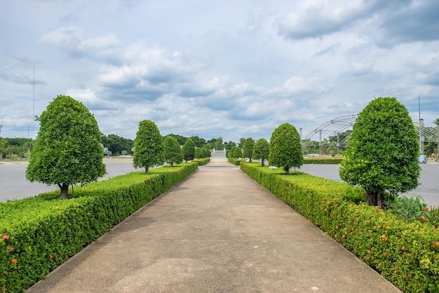 Camino recto ordenado jardín ornamental.