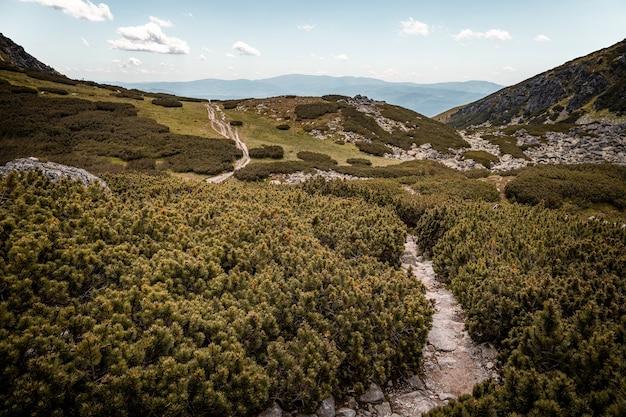 Camino rocoso en una caminata en high tatras