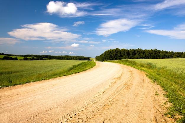 Camino rural en el año de verano.