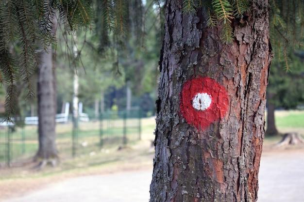 Camino de senderismo rojo y blanco marca circular en corteza de árbol. rastro número uno escrito por debajo. departamento sombrío del efecto de campo.