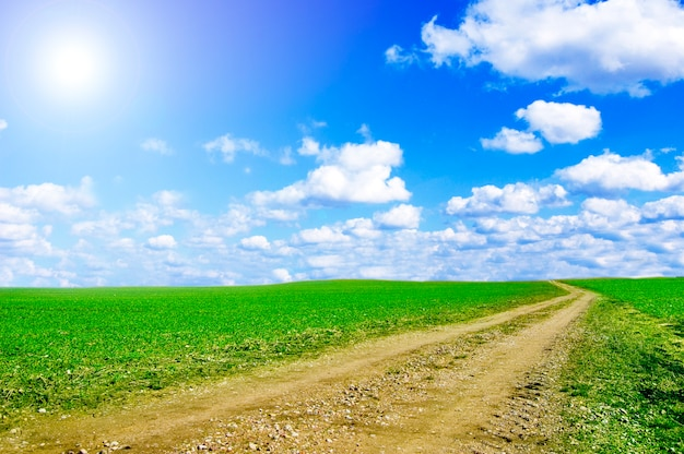 Camino de tierra con un día nublado